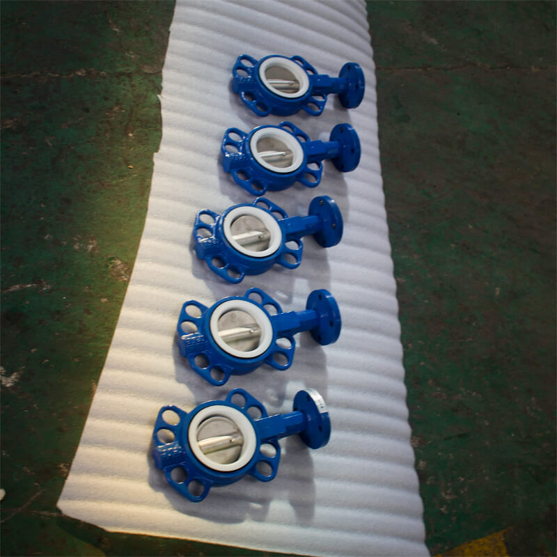 Bare Stem GGG40 DN125 PTFE Centerline Wafer Butterfly Valve