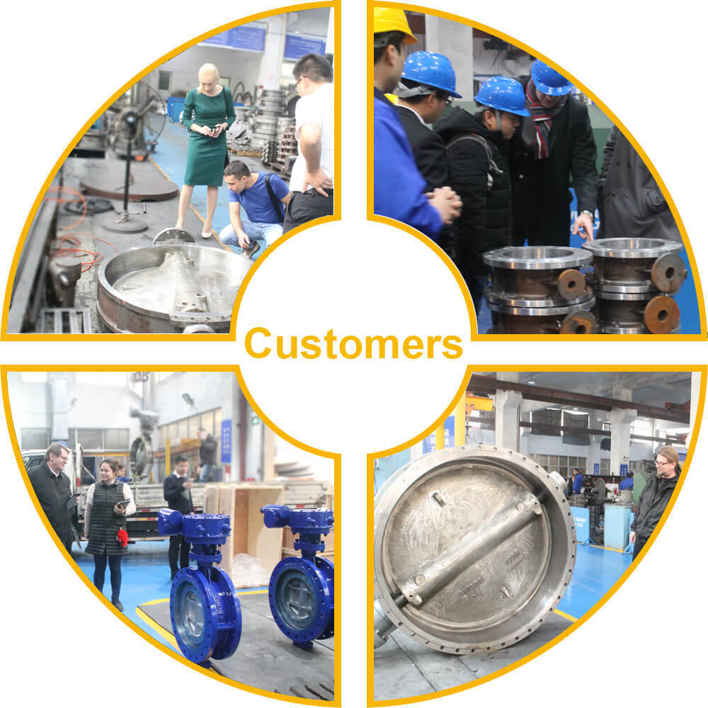 Butterfly Valve Customer Visiting