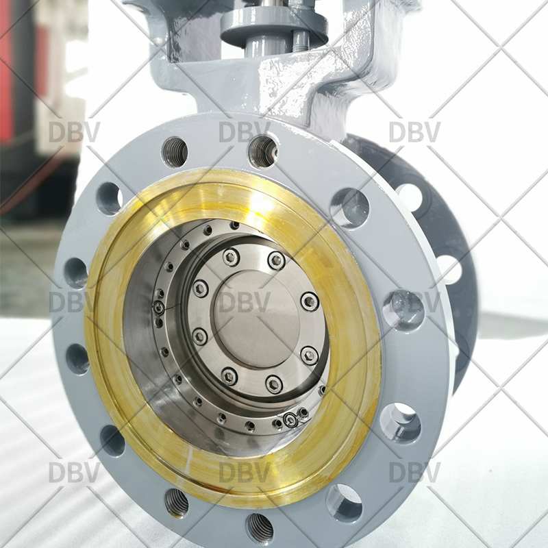 Replaceable metal to metal seat butterfly valve